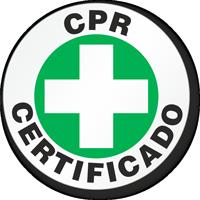 Car Certificado Hard Hat Labels