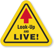 Look-Up And Live Hard Hat Decals