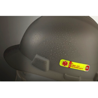 ICE Hard Hat Sticker