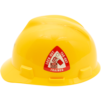 Triangle Hard Hat Decal