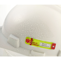 ICE Hard Hat ID Sticker