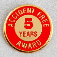 Enameled Metal 5 Years Lapel Pin