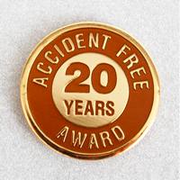 Enameled Metal 20 Years Lapel Pin